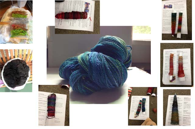 Experiments in spinning, including the purchase of a first place fleece I'm still a little too scared to touch.
