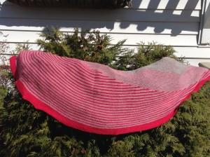 shawl on bushes